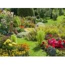 Jobportale im Garten-, Landschafts- und Bauwesen