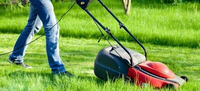 Ein Beispiel für Bürgerarbeit kann die Instandhaltung von Grünflächen sein.