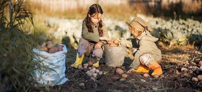 Kindergeld: Welche Zahltermine gelten dieses Jahr? In unserem Ratgeber erfahren Sie es!