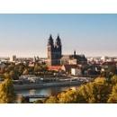 Anwalt Sozialrecht Magdeburg